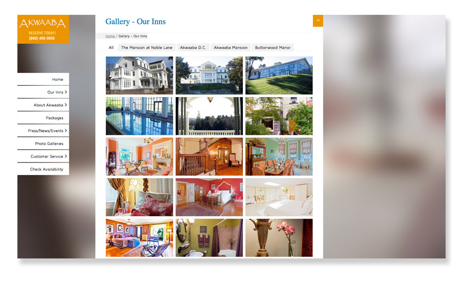 Akwaaba_Gallery_Page